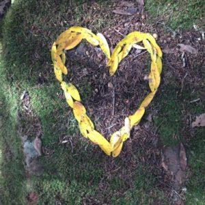 innerportals-leaf-heart